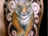 tiger-tattoos-on-arm